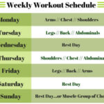 Workout Routine for Beginners
